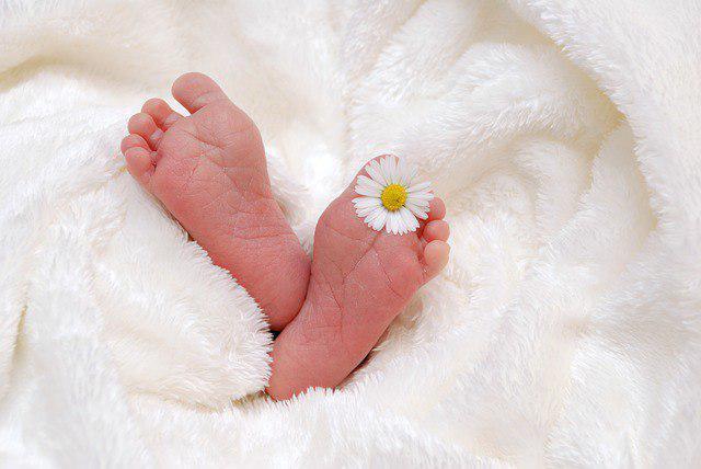 В роддоме на Костромской начали выдавать свидетельства о рождении