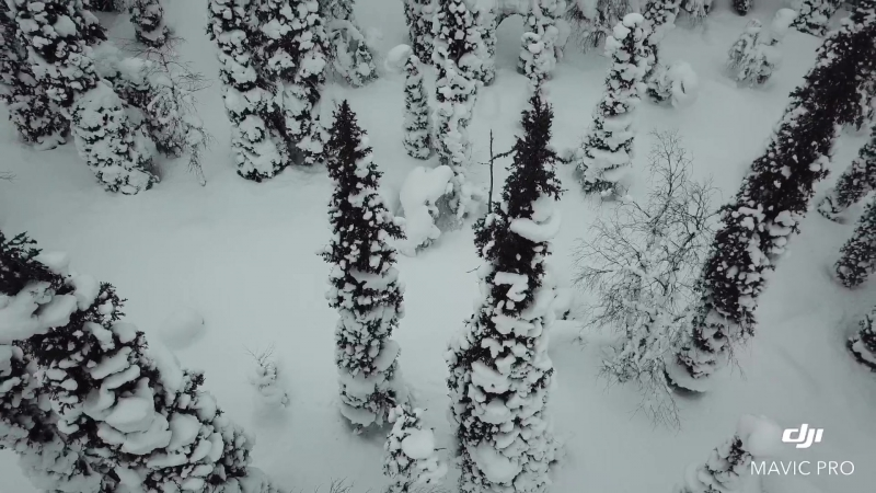 На снегоходах по Кольскому полуоcтрову