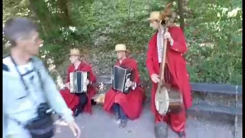 Умань Софиевский парк Вот такие музыканты там играют