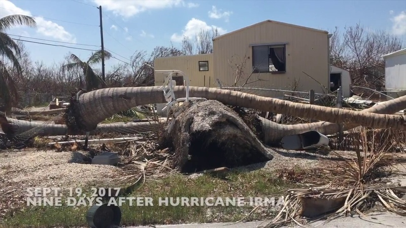 What a mobile home neighborhood looks like after Hurricane Irma