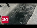 В Новосибирске ждут теплого Крещения - Россия 24