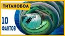 ХОРОШО, ЧТО ЭТОТ ЗМЕЙ ВЫМЕР! 10 фактов о титанобоа! Динозавры и другие вымершие животные!