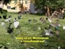 Покос травы на придомовых территориях в южной части Воскресенска, ул. Московская и Колыберевская