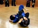 (46)inner reaping ankle throw knee bar(Korea jiu jitsu Gongkwon Yusul)Hapkido