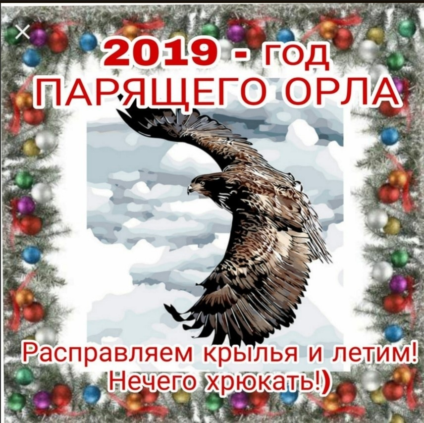 Новый 2019 год Парящего Орла по славянскому календарю: прогноз, деньги, работа, любовь и настрение