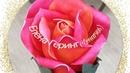 Роза Изолон на USB Rose Isolon on USB