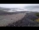 غرائب حول العالم على تويتر- -مشهد غير مألوف نهر من الصخور يجري كالماء في سهول كانتربيري في الجزيرة الجنوبية لنيوزيلندا 🏞… -