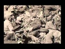 Eisenhowers Rhine Meadows Death Camps A Deliberate Policy of Extermination documentary