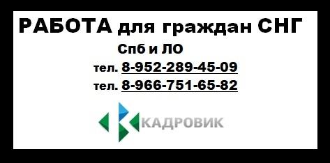 https://pp.userapi.com/c845217/v845217199/10f4b7/8oj89gGlEfk.jpg