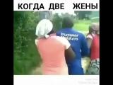 [Kavkaz Vine]Когда 2 жены ?