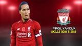 Virgil van Dijk - 2018 &amp 2019 - Elite Defensive Skills,Interceptions,Passes &amp Goals HD
