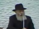 Евреи об уничтожении словян
