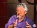 Professor David Suzuki speaks out against GMO's
