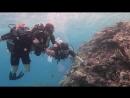 Хуркада - красное море