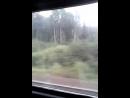 Лилия Куршина - Live