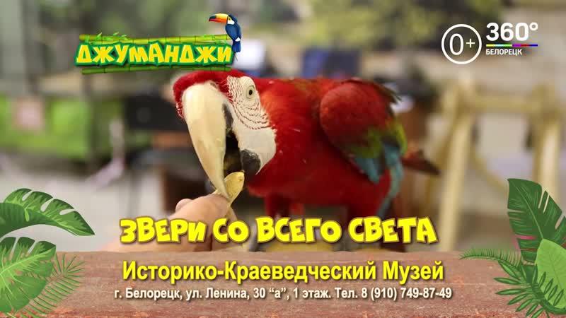 Контактный зоопарк «Джуманджи» с 15 мая до 2 июня