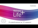 Wellness 4WOW спикер Екатерина Ильина