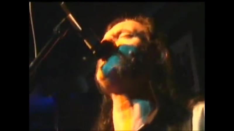 The Head Cat Lemmy Kilmister Motorhead (Rockn Roll Session)