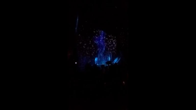 Шоу на концерте