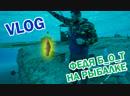 ФЕДЯ [ БОТ ] НА РЫБАЛКЕ VLOG | В ПОЙМАЛИ МОНСТРОВ ПОПАН_TV рыбалка VLOG