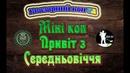 Міні коп. Привіт з Середньовіччя. Металошукач Квазар АРМ. Кладоискатели Украина. Поиск монет