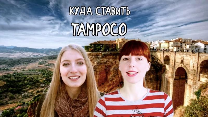Куда в предложении ставить TAMPOCO