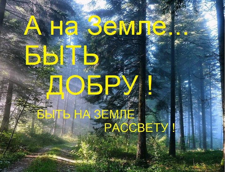 https://pp.userapi.com/c845217/v845217491/e699/Rfvdf1_XBnM.jpg