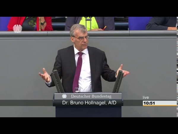 08.06.2018 Dr. Bruno Hollnagel AfD