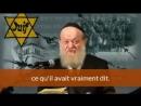 Pourquoi Hitler détestait il les Juifs Explication d'un Rabbin Juif sur Mein