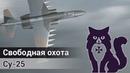 Свободная охота на Су-25 (DCS World Stream)   WaffenCatLive