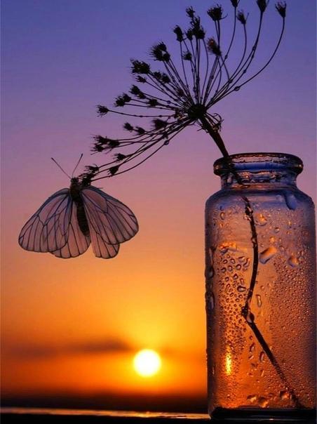 Закат пусть будет райским,