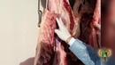 Запрет ввоза мяса говядины со следами срезов ветеринарных клейм