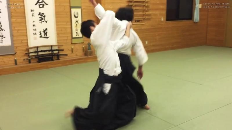 【合気道】捨身技 Aikido sacrifice techniques in freestyle (Jiyu Waza)