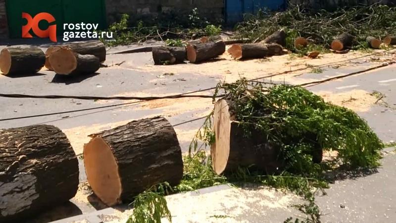 Последствия урагана, который произошел в Ростове 11 июля