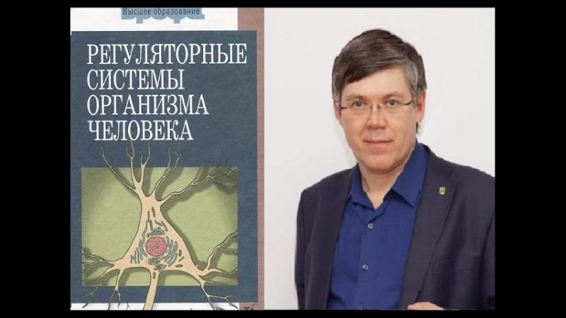 """В.А. Дубынин """"Регуляторные системы организма"""" Гл.4"""