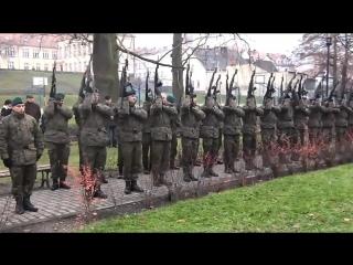 To jest Polska! ?