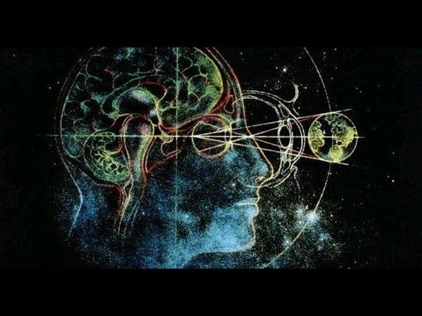 НАШЛИ! Высший разум - это Центральный компьютер Вселенной, который координирует все процессы!