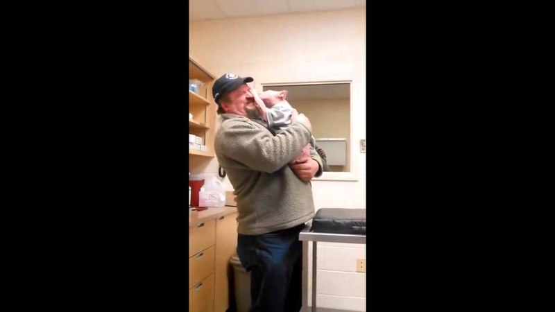 Mojo the Pittbul Puppy first reaction to the man that saved his life