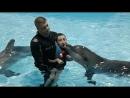 Прощание с Омегой и Клёпой. Последнее занятие дельфинотерапии.