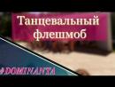 Конкурс флешмобов. Шрек 18.06.2018