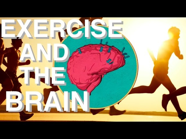 WHY Exercise is so Underrated (Brain Power Movement Link)
