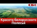 Красота белорусского Полесья с воздуха – Споровский заказник новое видео с коптера