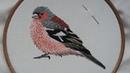 2. Hand Embroidery. Chaffinch. Stitching a Bird Online Class