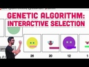 9.9: Genetic Algorithm: Interactive Selection - The Nature of Code