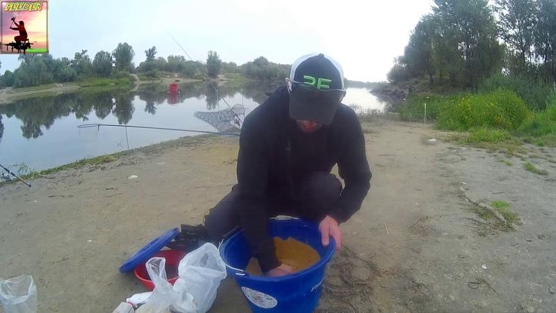 Рыба, АУУУ Трудовая рыбалка в начале сентября. Фидер на Припяти.
