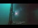BBC «Океаны (1). Море Кортеса (Калифорнийский залив)» (Познавательный, природа, путешествие, 2008)