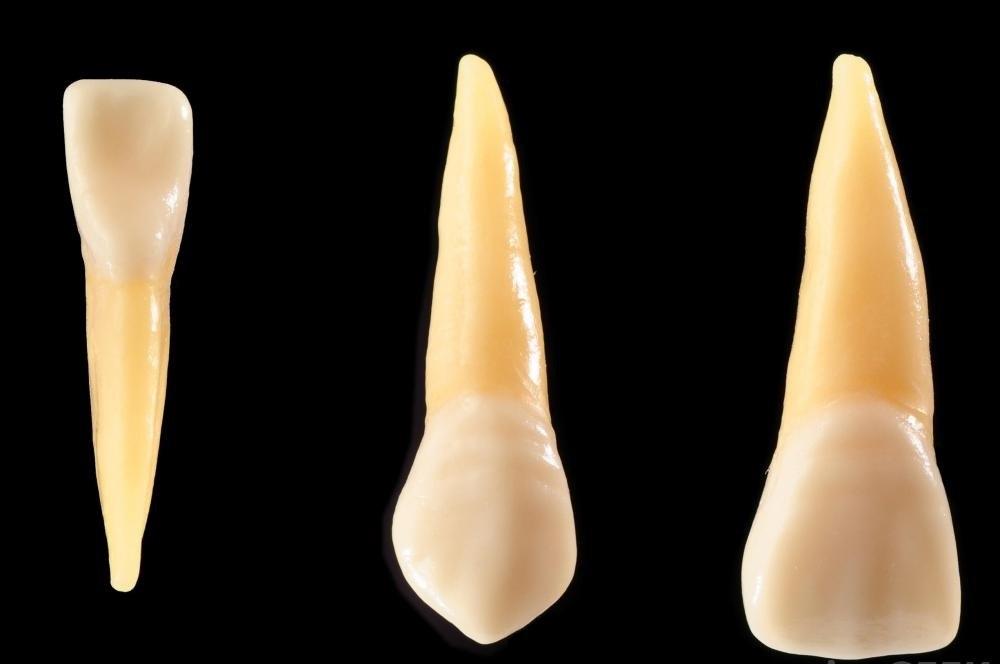 Фторид может помочь укрепить и защитить зубную эмаль.