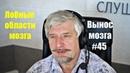 Лобные области мозга Сергей Савельев Вынос мозга 45