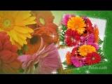 С днём рождения, доченька моя ! ✿ Музыкальная видео открытка.mp4