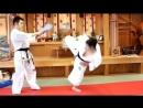 Варианты стремительной атаки в Кёкусинкай карате. Подготовка бойца
